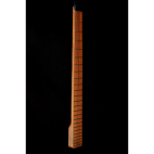 Steinberger Style neck- lefty